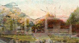 ANCESTOR HOUSE